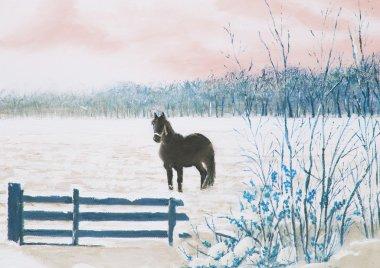 Frisian horse in a snowy meadow