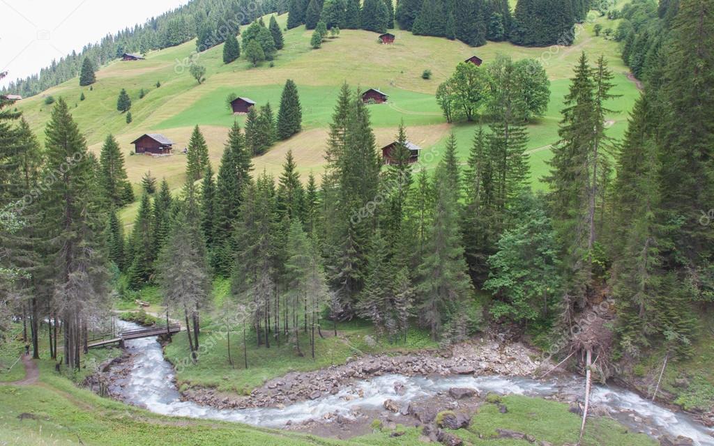 Casas t picas en los alpes suizos fotos de stock michaklootwijk 82818778 - Casas en los alpes suizos ...