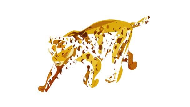 Animace ikon geparda