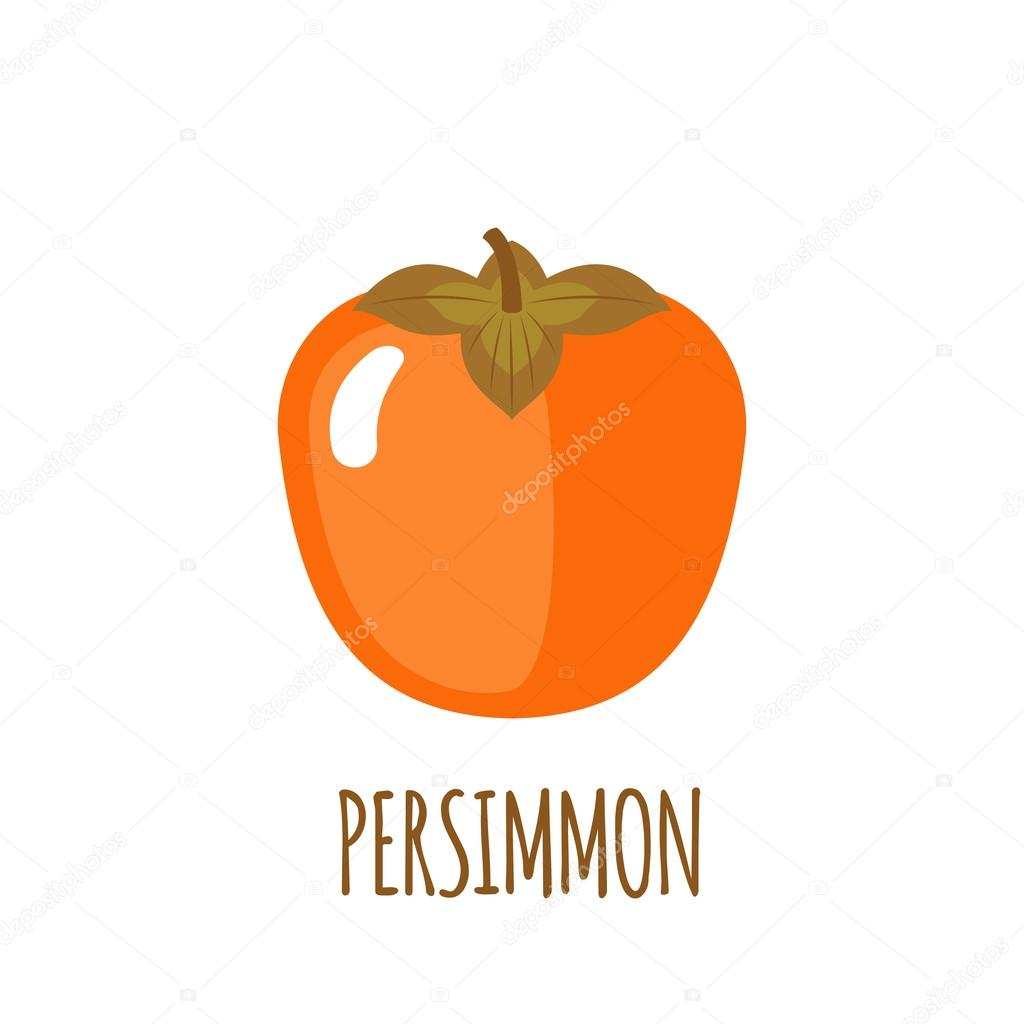 Persimmon icon in flat style on white background