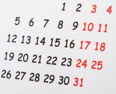 Close-up of calendar page