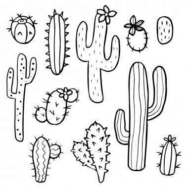 Hand drawn cactus plants