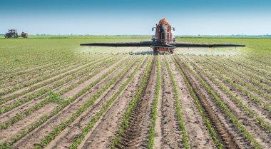 Spraying soya bean field