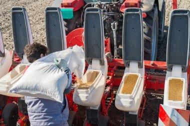 Seeding soybeans