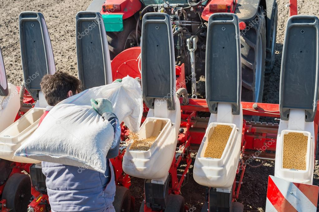 Seeding soybeans