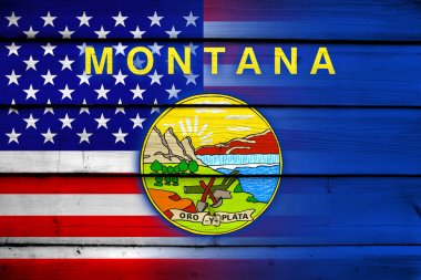 USA and Montana State Flag on wood background