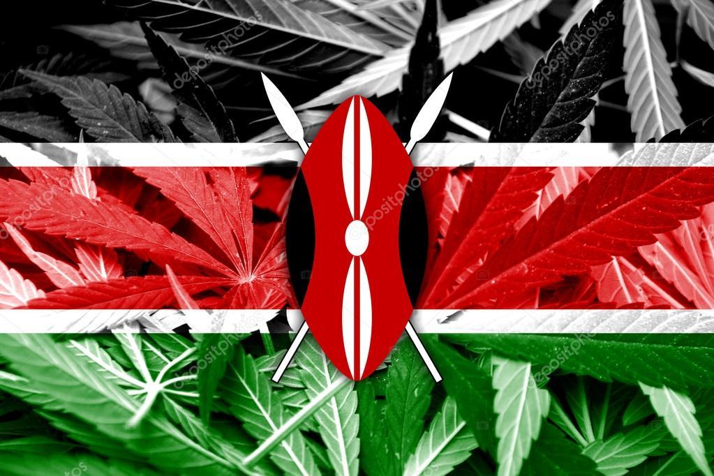 Лига легализации марихуаны жидкость с марихуаной купить