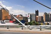 Nelson Mandela most - Johannesburg, Jižní Afrika