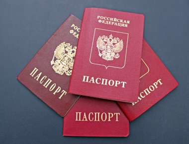 Several passports of a citizen of  Russian Federation isolated o