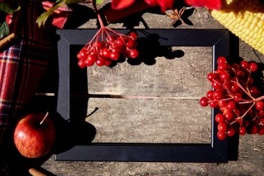 Autumn creative mood board concept: fruits and vegetables, pumpkin, corn, pears, apple, grapes and melon in the black frame. Thanksgiving Day concept. Autumn aesthetic still life with trendy shadows.