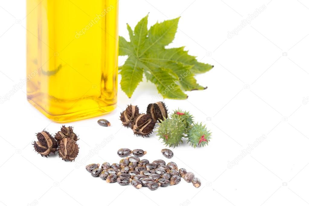 Касторовое масло — стоковое фото