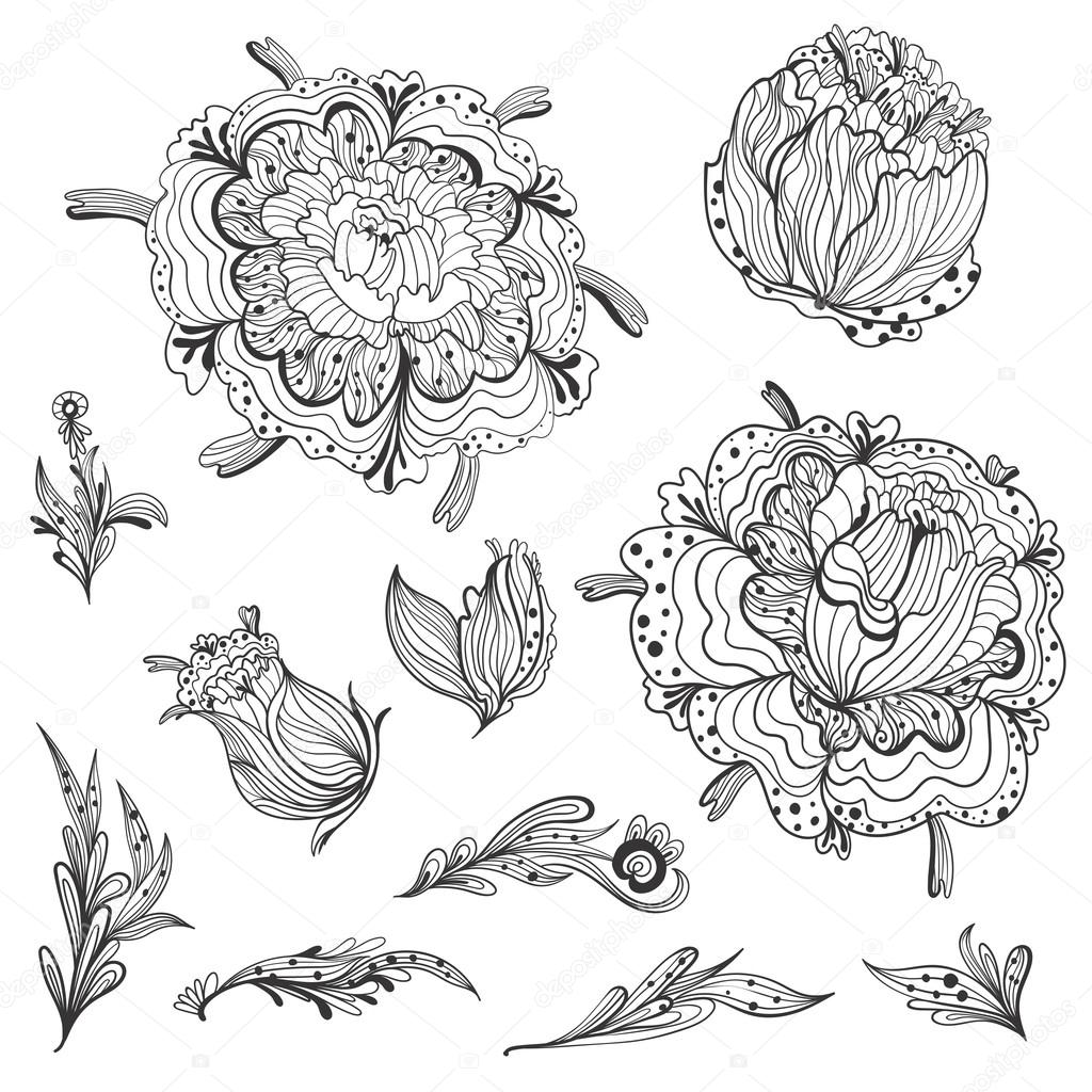 Sketch Floral Design Elements