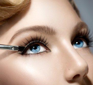 Makeup Applying closeup.