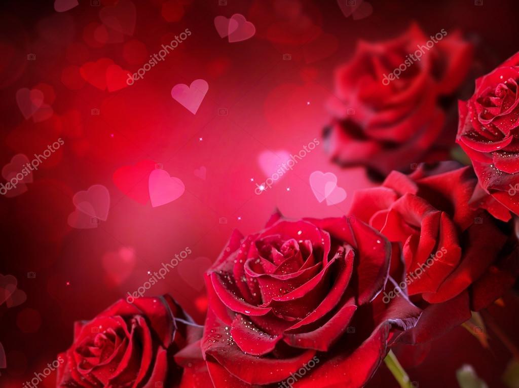 fondo rosas y corazones fotos de stock
