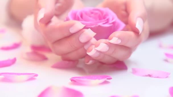女人的指甲与法国修指甲