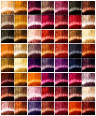 Hair colors palette. Tints.