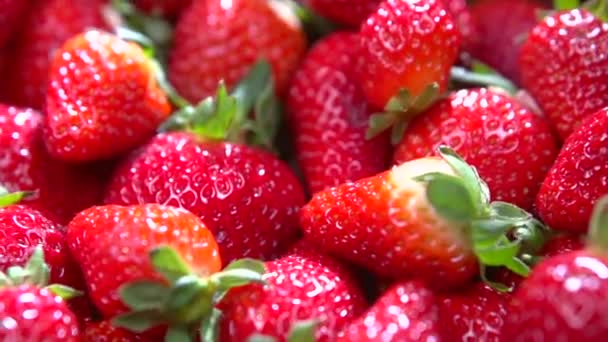 čerstvé zralé jahody dokonalé