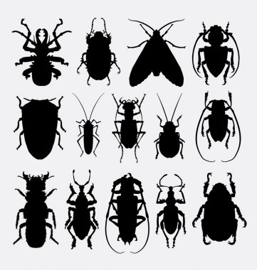 Bug, insect, arachnid animal silhoutte