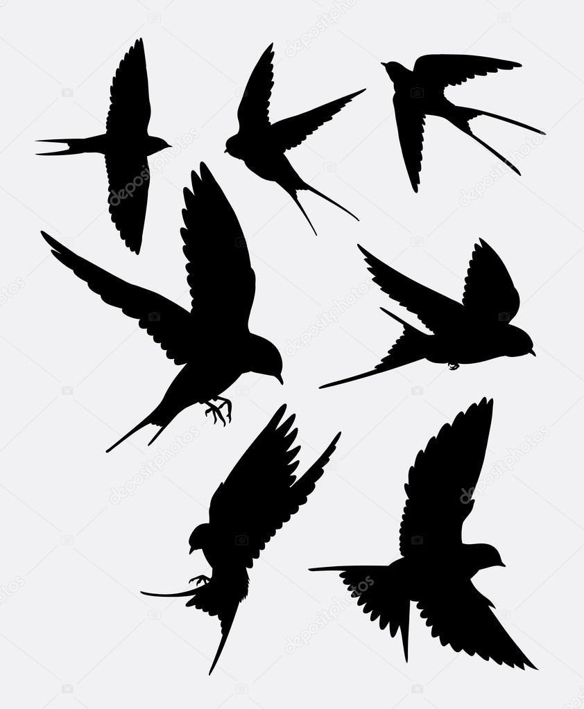 Stock Illustration Swallow Bird Animal Silhouette on Swallow Bird Tattoo Design