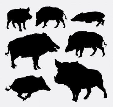 Wild boar silhouettes