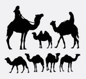 Photo Camel animal silhouettes