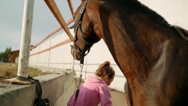 Kartáč na vlnu v dívčině ruce, proces péče o koně.