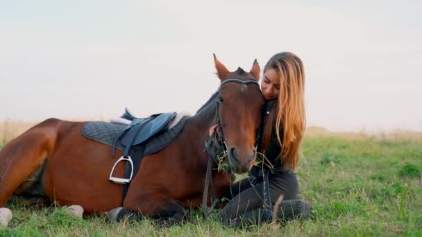 A lány a mezőn ül a ló mellett..