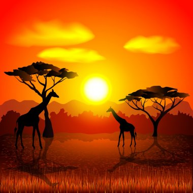 Sunset in african savannah vector background