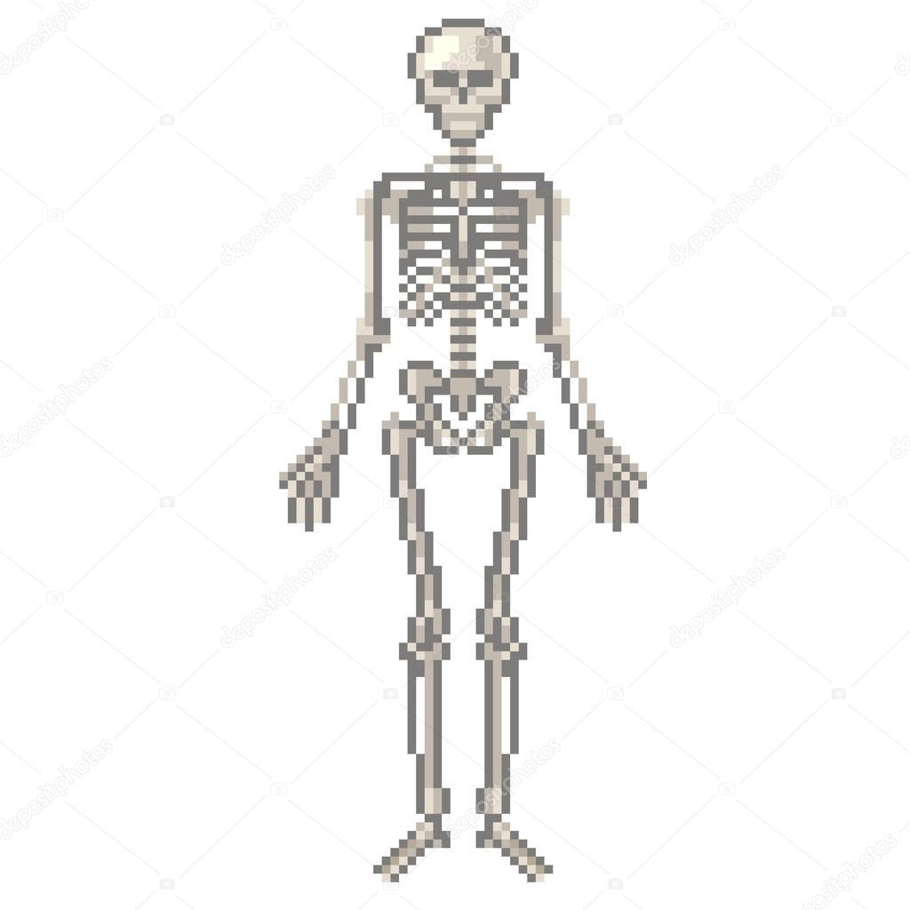 Vector aislado esqueleto humano de pixel — Vector de stock ...
