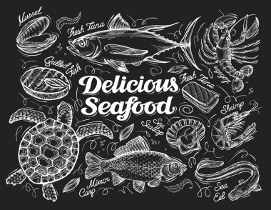 Delicious seafood. Hand drawn sketch of a fish, tuna, lobster, shrimp, scallop, eel, carp, turtle, mussel, conch. Vector illustration