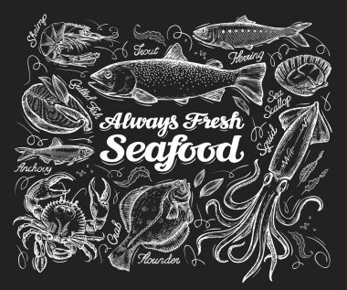 Seafood. Hand drawn sketch of a fish, trout, flounder, herring, squid, crab, anchovies, shrimp, scallop. vector illustration