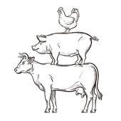 Photo hand drawn cow, pig, chicken. vector illustration