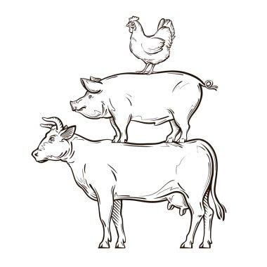 hand drawn cow, pig, chicken. vector illustration