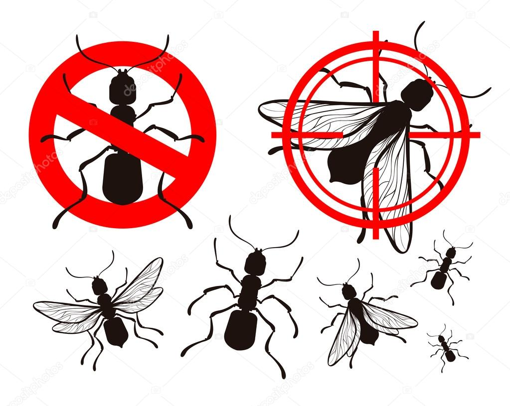Control de plagas establezca los iconos de la hormiga for Control de plagas badajoz