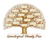 Fotografie Vintage Genealogical Family Tree. Leafless old oak tree. Dynasty, ancestry. Hand drawn sketch vector illustration