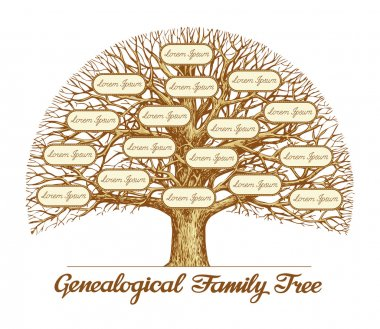 Vintage Genealogical Family Tree. Leafless old oak tree. Dynasty, ancestry. Hand drawn sketch vector illustration