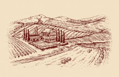 Italy. Italian landscape. Hand-drawn sketch vintage vineyard, farm. Vector illustration