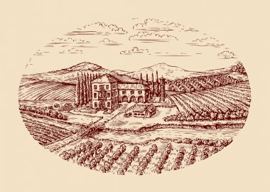 Italy. Italian rural landscape. Hand drawn sketch vintage vineyard, farm, agriculture, farming. Vector illustration