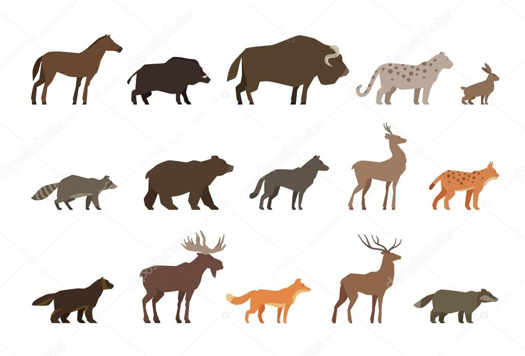 Animals set of colored icons isolated on white background. Vector illustration