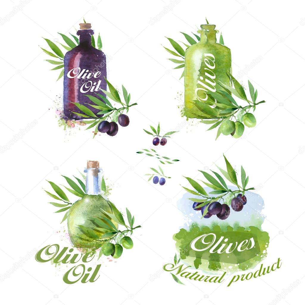 Olive icons. Vector format