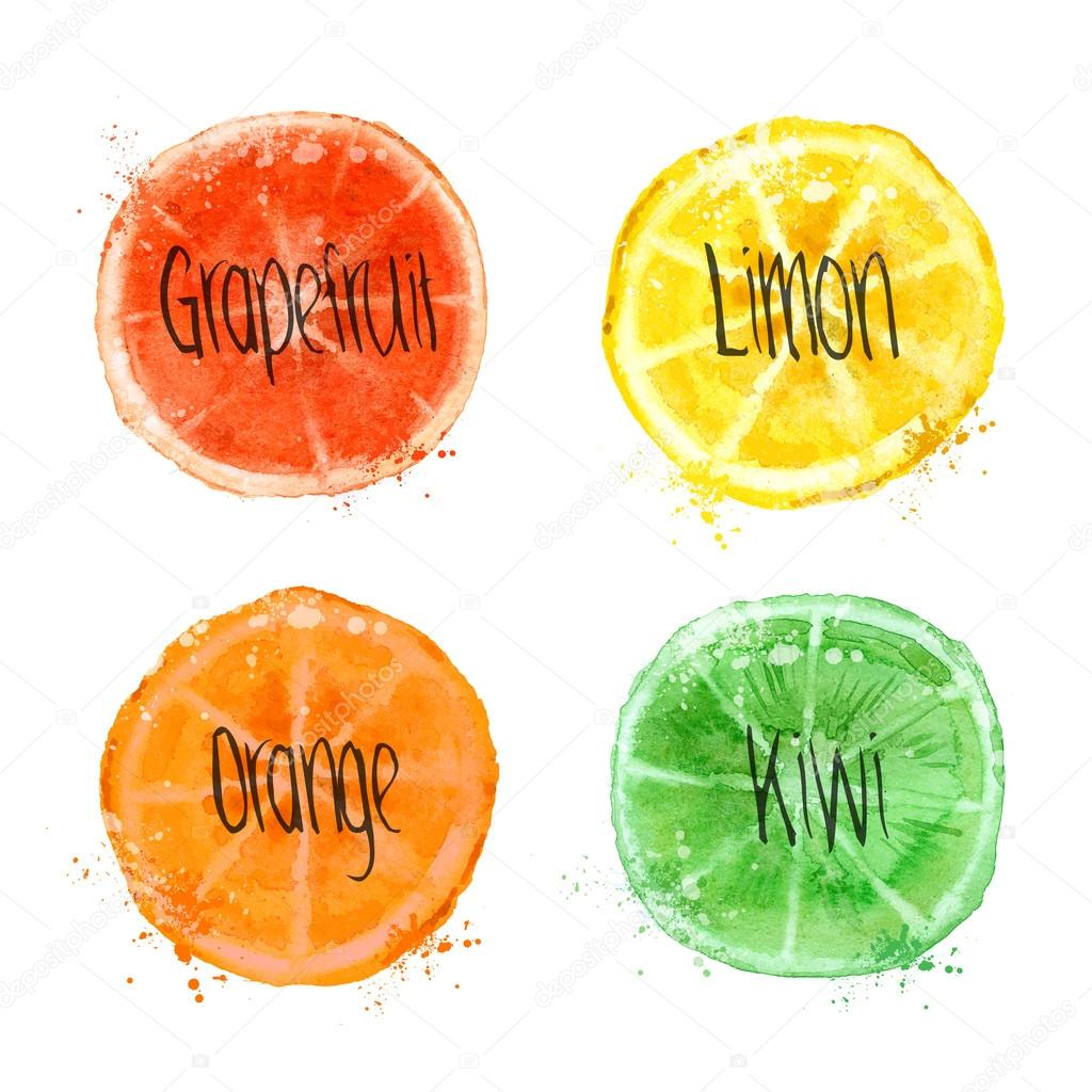 Fruits. Vector format