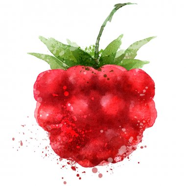 Berry vector logo design template. Raspberry or food icon.