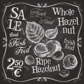 Hazelnut, walnut, nut logo design