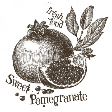 Pomegranate logo design template
