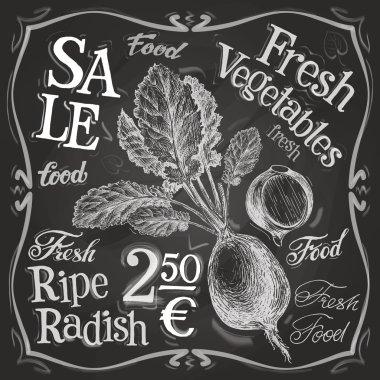 Radish logo design template
