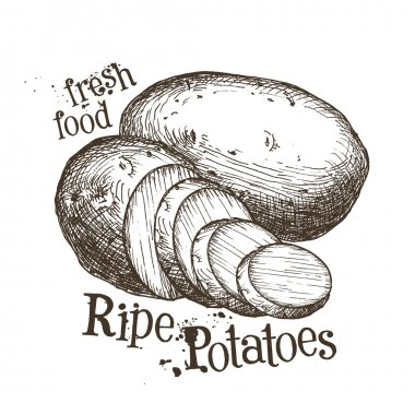 Ripe potatoes logo design template