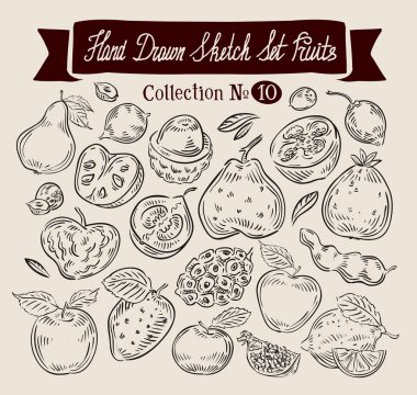 Fruit. Hand drawn vector sketch set food. Vector illustration