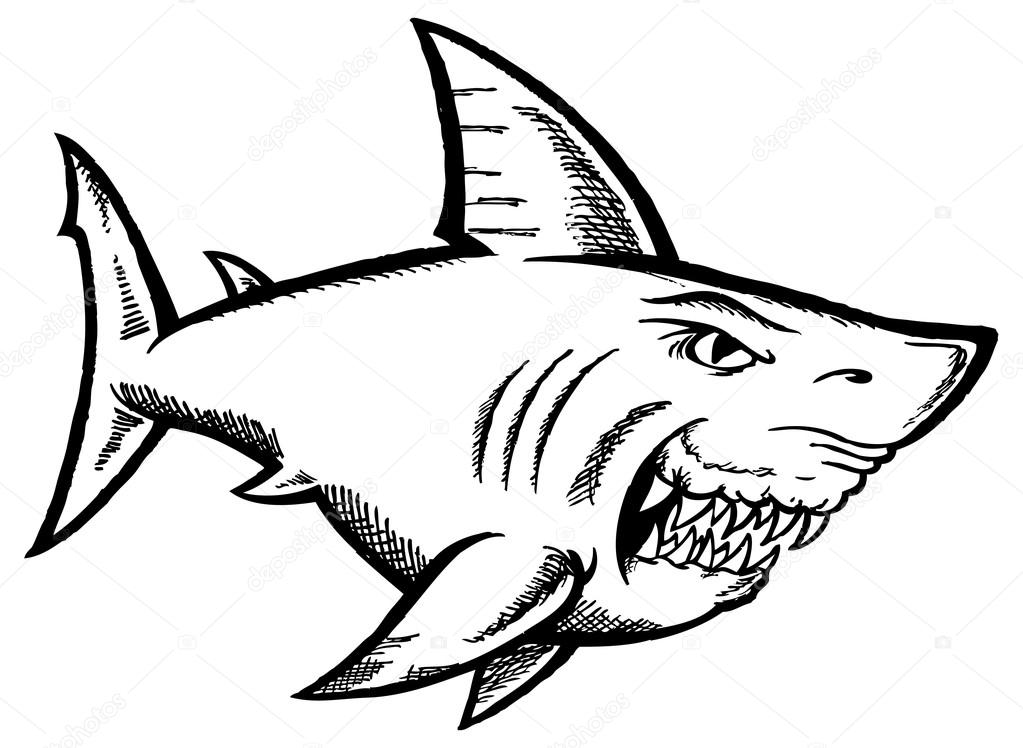 Dibujos: Tiburones Blancos