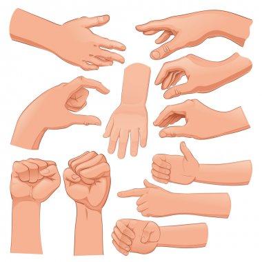 Set of several hands