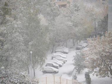 First snow in Moscow. Snowfall